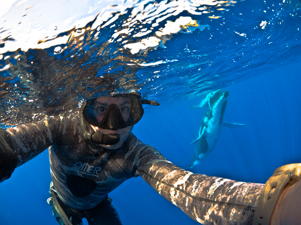 Self-portrait with humback whales
